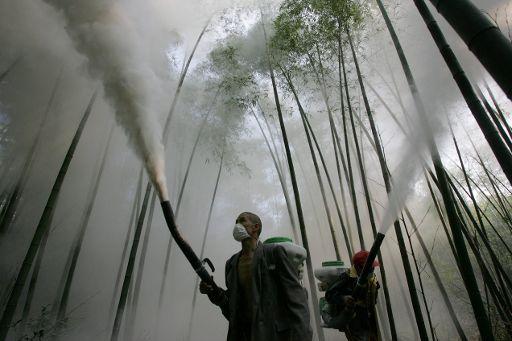 pict 20071005pht11282 - Pesticidas urbanos contaminan el 90% de los ríos de Estados Unidos